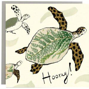 Hooray! Turtle Card